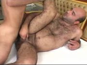 Chubby Bear Taking Hard Dick Deep Inside