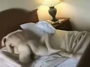 Hot sex in a motel room