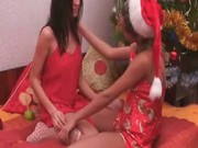 Lesbians and christmas tree