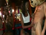 Dancing bear strippers get blowjobs fromt he ladies