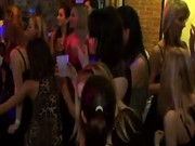 Party with girls stroking male strippers